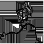 Přespolní běh -