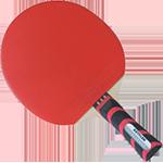 Stolní tenis - Finále poháru