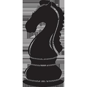 Šachy -